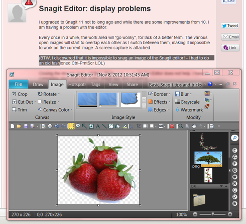 Snagit editor not showing capture