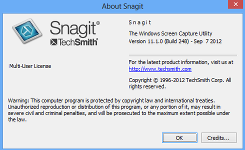 how does snagit work