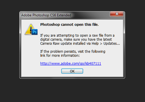 Camera Raw: 7 4 still not working on my D600 NEF file (bugs